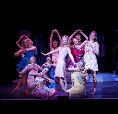 Photos from the Legally Blonde performance March 10-14. Photos courtesy of Legally Blonde cast.