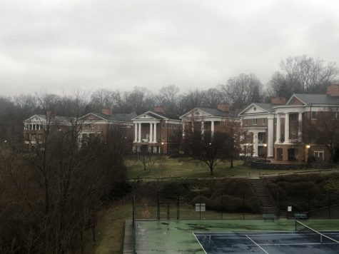 The six National Panhellenic sorority houses sit in a row next to Wilson Field.